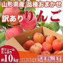 りんご 訳あり 品種おまかせ 10キロ 山形県産 ご家庭用 ...