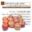 山形県産 りんご ...