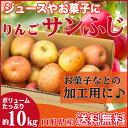 りんご 加工用 10キロ サンふじ 山形県産 ジュース用 訳...