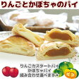 【よりどり5品対象】りんごカスタードパイ パンプキンパイ 選べます! 手のひらサイズのパイです [よりどり対象]