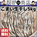 送料無料 氷下魚(こまい)業務用 生干し 5kg 小振りなサイズなので骨までまるごと食べれます! 氷下魚 コマイ一夜干し 干物