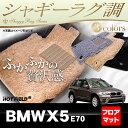 BMW X5 (E70) フロアマット ◆シャギーラグ調 HOTFIELD光触媒加工済み 送料無料 マット 車 運転席 助手席 カーマット カーペット カスタムパーツ 車用品 カー用品 日本製 ホットフィールド フロア フロアーマット グッズ パーツ