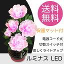 ルミナス ぼたん 牡丹 ボタン 法徳堂限定 専用 保護 マット 付き LED 盆提灯 仏花 送料無料