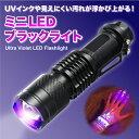 LEDブラックライト 365nm UVインクや見えない汚れを確認 真贋鑑定に 小型UV懐中電灯 XPE365