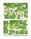 繰り返し利用可能 ウォールステッカー:青葉の茂った樹木 2枚セット 小鳥 森 XY1097