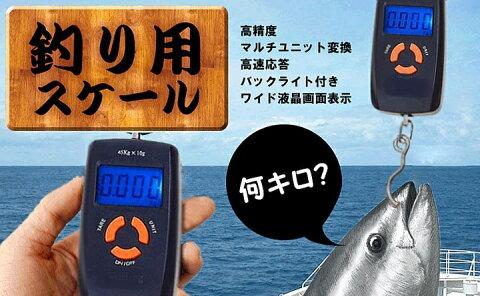 魚釣りで学ぶプロジェクトマネージメント