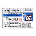 ゼネラルステッカー:なめ猫 なめねこ ステッカー 車 リアガラス リヤガラス バンパー スマホ 免許証 運転免許/LCS-447
