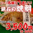 焼鯛2〜3名さま位の大きさ<焼き鯛8月上旬発送分>【長寿のお祝い・お食い初め祝膳に焼き鯛】