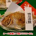 焼鯛2〜3名さま位の大きさ<焼き鯛8月下旬発送分>【長寿のお祝い・お食い初め祝膳に