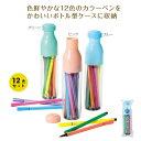 【ケース付カラーペン12色セット】カラーペン セット 文具