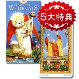 可愛的!塔羅牌塔羅牌日本非常流行的原手冊還介紹了我們的白貓塔羅牌] [白貓塔羅牌[ホワイトキャッツ?タロット【貓好きに贈る貓づくしタロットカード!】【あす楽対応】【!條件付】【レビュー投稿でラッキーカード