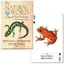 【カラフルでかわいらしい爬虫類と両生類たち】トランプ ナチュラル・ワールド 世界の爬虫類と両生類