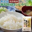 【300円クーポン&P5倍】お得な 20kgセット♪ 無洗米...