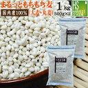 まるっともちもち麦(大麦/丸麦)計1kg(500g×2袋)【メー
