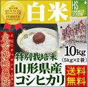 特別栽培米太古活性農法山形県産コシヒカリ10kg(5kg×2袋)