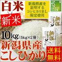 白米 精白米 新米 30年産新潟県産コシヒカリ 10kg(5...