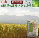 30年産 特別栽培米 送料無料 新潟県佐渡産コシヒカリ 5kg