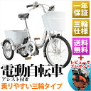 Raychell 電動自転車 20インチ TR-203EA 電動アシス...