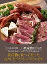 モモ ブロック 550g〜×2 天然ジビエ イノシシ肉豚肉よりもヘルシーに!熊本の農産物を守る農家ハンターが捕獲した安心安全なジビエ(猪肉・イノシシ肉)を熊本県よりお届けしますサステナブル SGDs エシカル