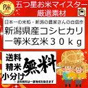 29年 新潟県産 こしひかり 玄米 30kg 一等米コシヒカリ 百萬粒 ひゃくまんつぶ
