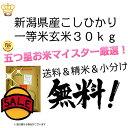29年 新米 新潟県産 こしひかり 玄米 30kg 一等米【米30kg 送料無料】コシヒカリ 百萬