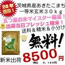 28年 新米 茨城県産 あきたこまち 玄米 30kg 一等米【米30kg 送料無料】