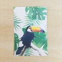 オニオオハシ ポストカード 鳥 鳥好き 雑貨 イラスト アニマル かわいい グッズ プレゼント ギフト 年賀状 暑中見舞い 暑中お見舞 おにおおはし オオハシ オオオオハシ ブラジル 国鳥 野鳥 南国 カリブ海 南米 ジャングル アマゾン アマゾンの宝石 カラフル 大型