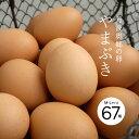 【産地直送】【送料無料】丹波奥郷 やまぶき卵 67個入【丹波 カンナンファーム】