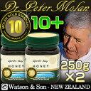 MGSプレミアム・マヌカハニー ピーターモラン博士認定 高品質マヌカ蜂蜜 10+(250g×2) 実測MGO:341 お得な2個セット【成績書+製造保…