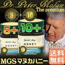 MGSマヌカハニー2種お試し 送料無料 ピーターモラン博士認定マヌカ10+(MGO300+)/5+(MGO100+) 250g×2個 (今だけリピok)