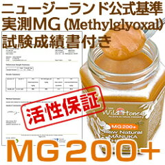 MG200+成績書