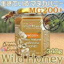 貴重な生マヌカハニー【MG200+】酵素が生きている天然マヌカ蜂蜜[ワイルドハニー]340g(単品)