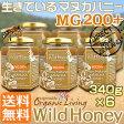 マヌカハニー 生タイプ【MG200+】酵素が生きている天然マヌカ蜂蜜[ワイルドハニー]お得な340g×6本セット
