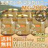 生マヌカハニー【MG200+】酵素が生きている天然マヌカ蜂蜜[ワイルドハニー]お得な340g×6本セット
