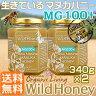 貴重な生マヌカハニー【MG100+】送料無料2本セット酵素が生きている天然マヌカ蜂蜜[ワイルドハニー]340g×2