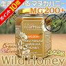 貴重な生マヌカハニー【MG200+】酵素が生きている天然マヌカ蜂蜜[ワイルドハニー]340g(単品)pj