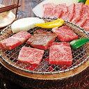 【送料無料】大西食品 佐賀牛ロース焼肉【マラソン201211_食品】【10P22Nov12】【SS10P02dec12】