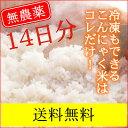 誰だって波乱爆笑 IKKOさんも使っている乾燥 こんにゃく米 14袋 こんにゃくごはん ダイエット米ご飯に しらたき米 !【送料無料】 糖質制限asu