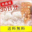 【がっつり(1ヶ月)コミコミ】石井さんの乾燥こんにゃく米30袋【送料無料】こんにゃくごは…