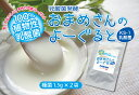ヨーグルト 種菌 豆乳 発酵 植物性乳酸菌 粉末 【送料無料】 おまめさんのよーぐると3g×2袋 お届けはポスト投函となります!