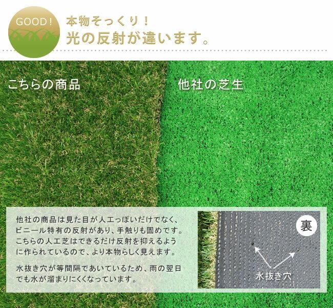 人工芝ロール 1x10m(毛足の長さ:20mm...の紹介画像3