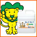 Fragrance [HLS_DU] of the lion fair fair medical bubble hand soap 4L orange mixture for business use
