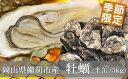 備前市産殻付き牡蠣(半缶5kg)【限定100セット!】送料無料!西日本 瀬戸内海 岡山 日生