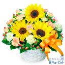 花キューピット【誕生日フラワーギフト】ひまわりのアレンジメントya00-511376 花 誕生日 お祝い 記念日 プレゼント