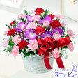 花キューピット【母の日ギフト】mt01yr-613226お母さんありがとう!アレンジメント