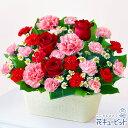 花キューピット【母の日ギフト】赤バラとカーネーションのバスケ...