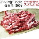 イベリコ豚ハラミ(はらみ)焼肉用500g(約3人前) bbq バーベキュー 肉 セット 豚肉 網焼