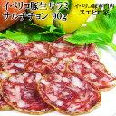 イベリコ豚熟成生サラミ サルチチョン 1パック90g サラミソーセージ/スエヒロ家/通販/酒の肴/おつまみ/珍味