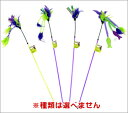 The one feather ※ kind is not available. [cat article, pet article, pet goods / cat, cat, cat / toy, toy]