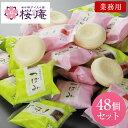 つぼみ業務用アイスクリーム【48個入り】【05P19Nov19】